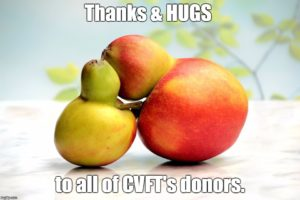 hugging fruit