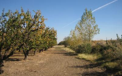VrMeer Farm