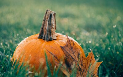 Pumpkins & the Origin of Jack O'Lanterns