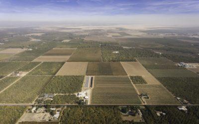 Machado Farm