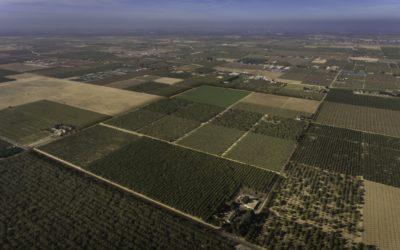 Menghetti Farm