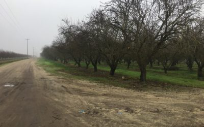 Kruppa Farm