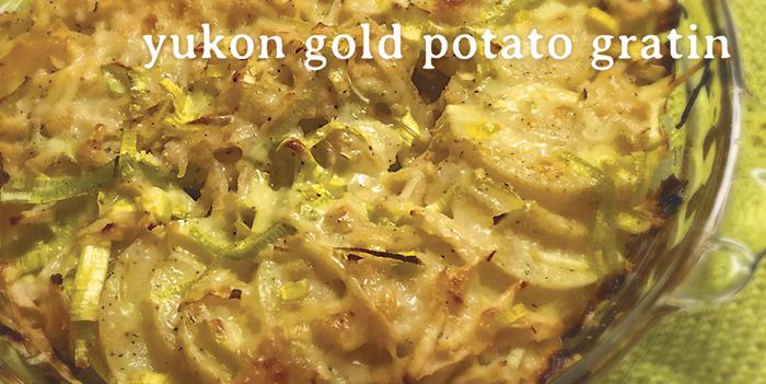 Yukon Gold Potato Gratin