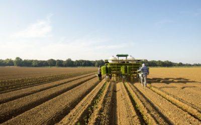 Introducing the California Farmland Trust