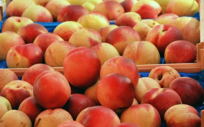 Peaches – they're a CA thang!